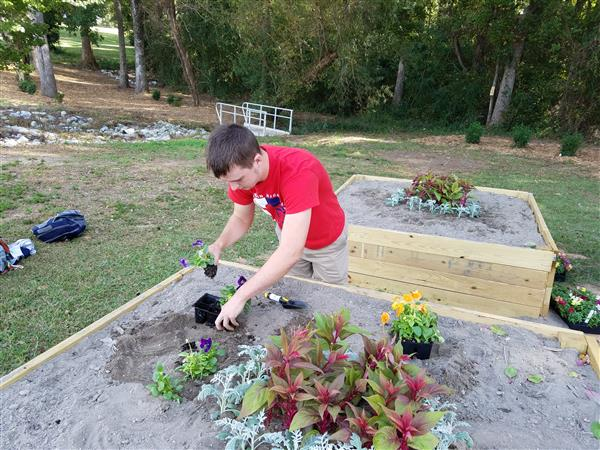 Jacob Whisenhunt, senior, plants flowers in a new wildlife garden in front of the campus of Lugoff-