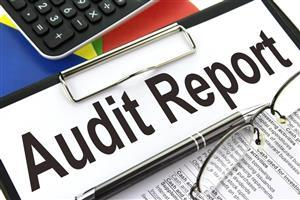 Audit Report Logo